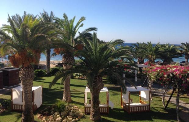 фото отеля Alion Beach изображение №37