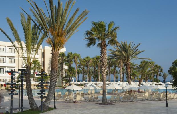 фото отеля Louis Phaethon Beach изображение №33