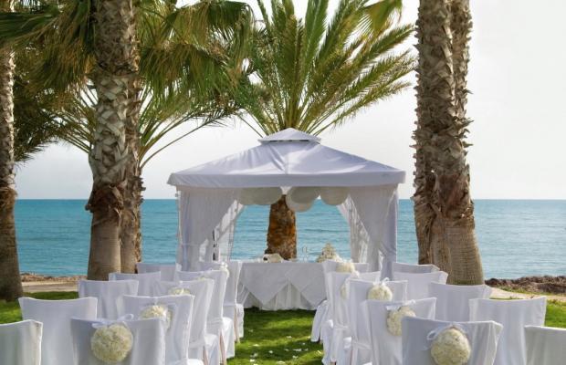 фото отеля Louis Phaethon Beach изображение №21