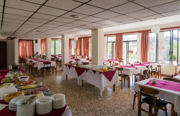 фотографии Marion Hotel изображение №32