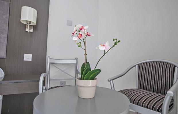 фотографии Smartline Napa Tsokkos (ех. Tsokkos Napa) изображение №8