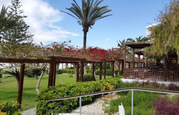 фото отеля Nissi Beach Resort  изображение №45