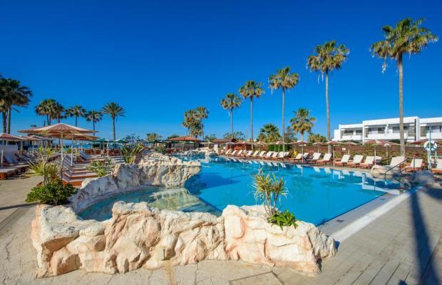 фотографии отеля Pavlo Napa Beach изображение №11