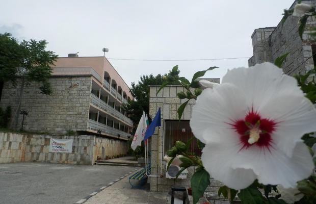 фотографии Olimpia Supersnab (Олимпия – Суперснаб) (Детский центр отдыха) изображение №8
