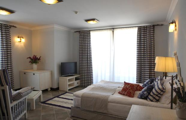 фотографии отеля Oasis Resort & Spa изображение №39