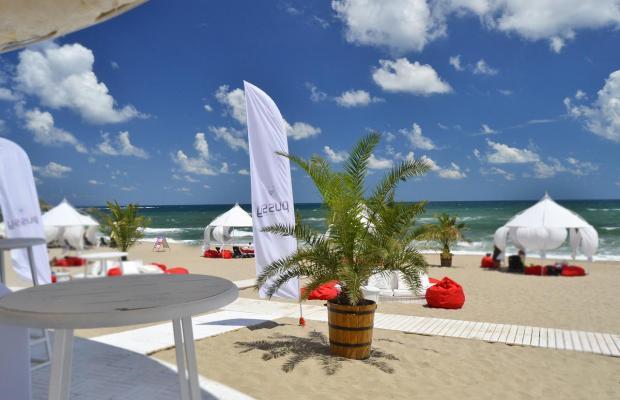 фото отеля Oasis Resort & Spa изображение №17
