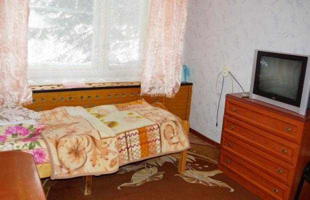 фото Жемчужина Камчатки (Zhemchuizhina Kamchatki) изображение №14