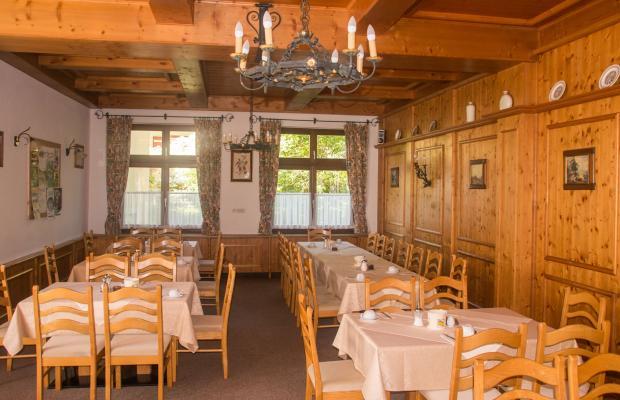 фотографии Hotel Goisererhof изображение №20