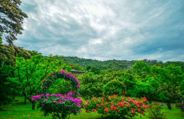 фотографии отеля Cloud Forest Lodge изображение №11