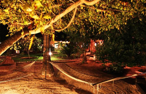 фото Paje By Night изображение №10
