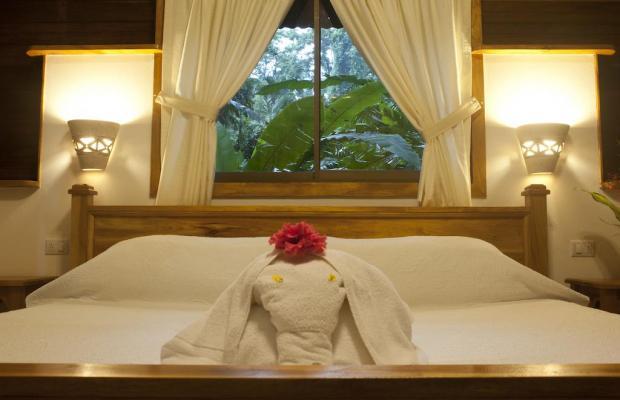 фотографии отеля Cariblue Beach and Jungle Resort изображение №63
