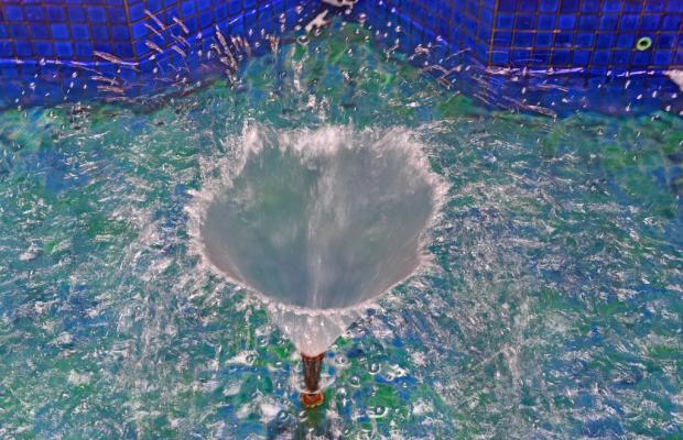 фото отеля Maru Maru изображение №5