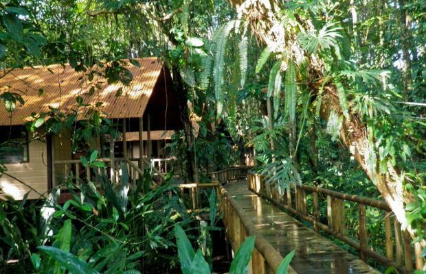 фото Evergreen lodge изображение №78