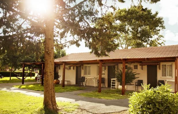 фотографии Nahsholim Seaside Resort (ех. Nachsholim Holiday Village Kibbutz Hotel) изображение №4