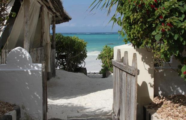 фотографии отеля Zanzibar Retreat изображение №3