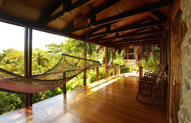 фотографии отеля Aguila de Osa Inn изображение №39