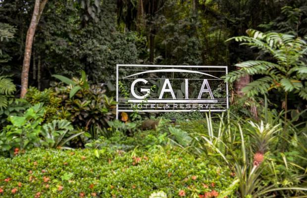 фото отеля Gaia Hotel & Reserve изображение №81