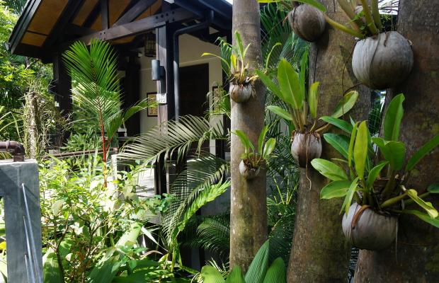 фото отеля Buena Vista Luxury Villas изображение №85
