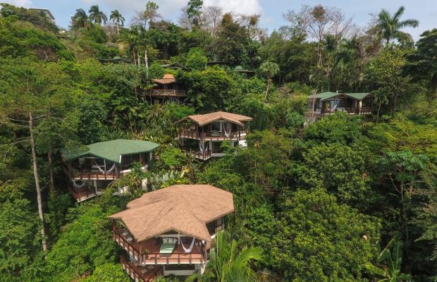 фото Buena Vista Luxury Villas изображение №74