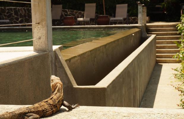 фотографии Buena Vista Luxury Villas изображение №64