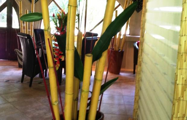 фотографии отеля Casa Corcovado Jungle Lodge изображение №11