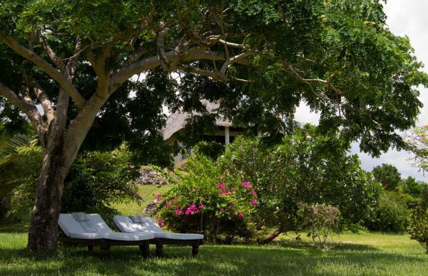 фото отеля Tijara Beach изображение №17