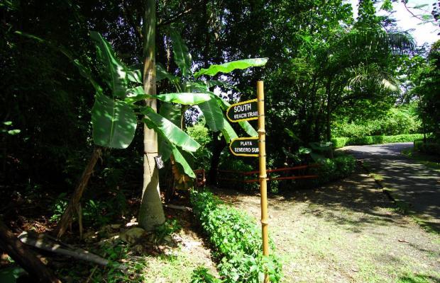 фотографии отеля Tulemar Bungalows & Villas изображение №11
