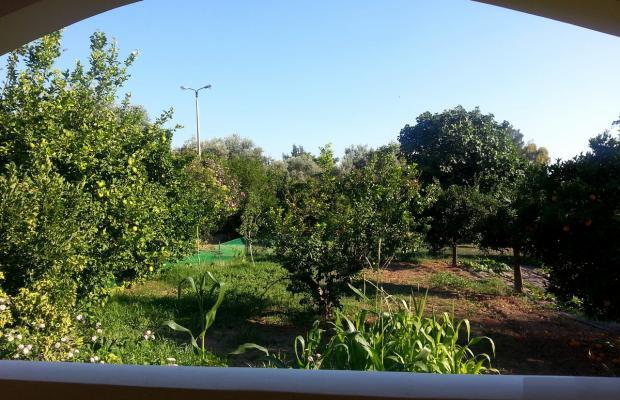 фото Holidays in Evia изображение №6