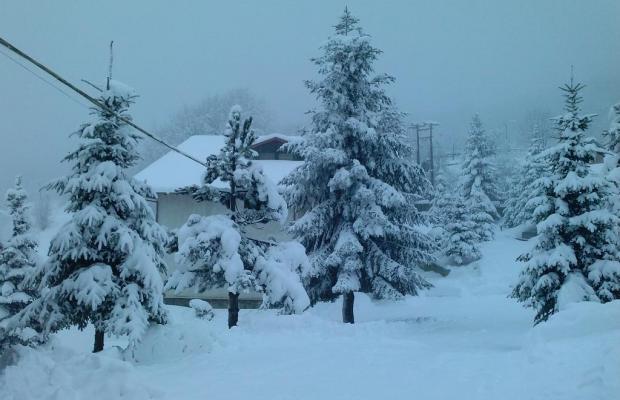 фото Naoussa Mountain Resort (ex. Naoussa Natura) изображение №62