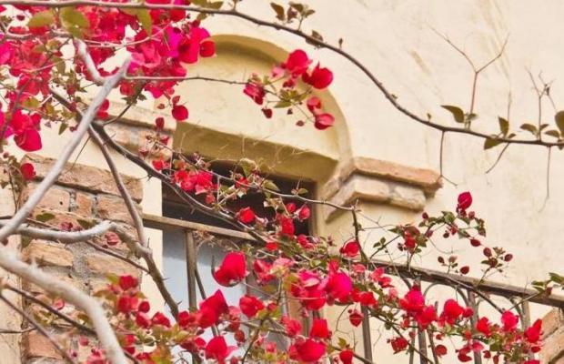 фотографии Residence Baia delle Palme изображение №4