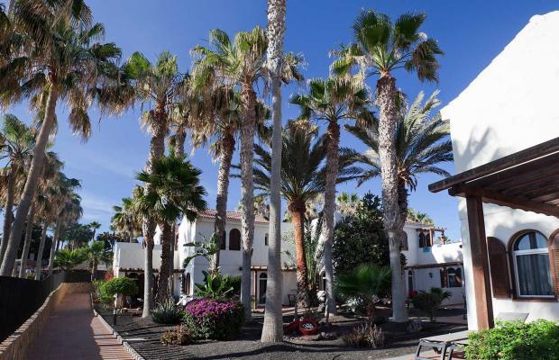 фотографии Barcelo Castillo Beach Resort изображение №24