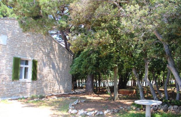 фотографии Villa Primorka изображение №24