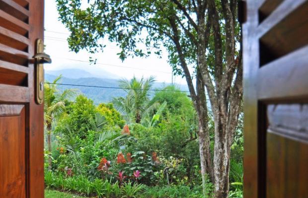 фотографии отеля Puri Lumbung Cottages изображение №7