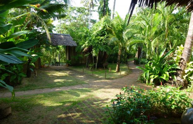 фотографии отеля Koyao Island Resort изображение №19