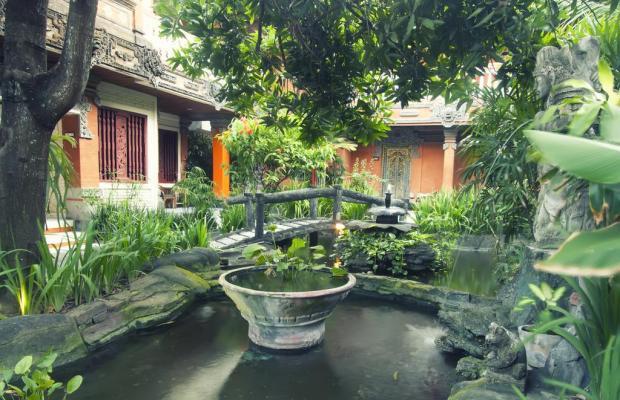 фотографии отеля Seminyak Paradiso изображение №15