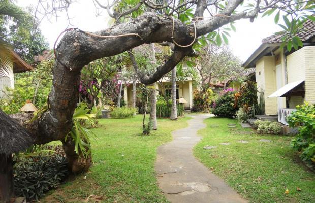 фотографии отеля Bali Lovina Beach Cottage изображение №15