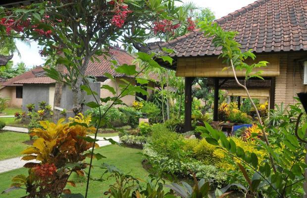 фотографии отеля Hidden Paradise Cottages изображение №11