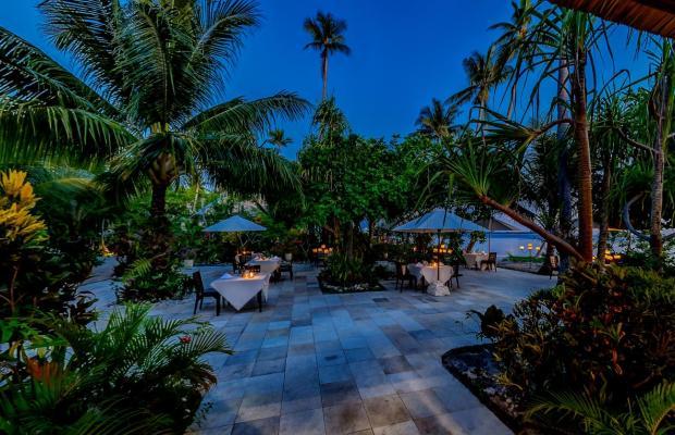 фотографии Wakatobi Dive Resort изображение №8