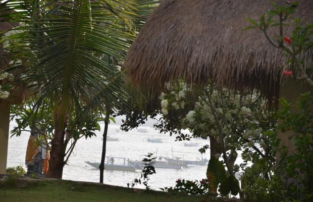 фотографии отеля Tamarind Beach Bungalows изображение №19