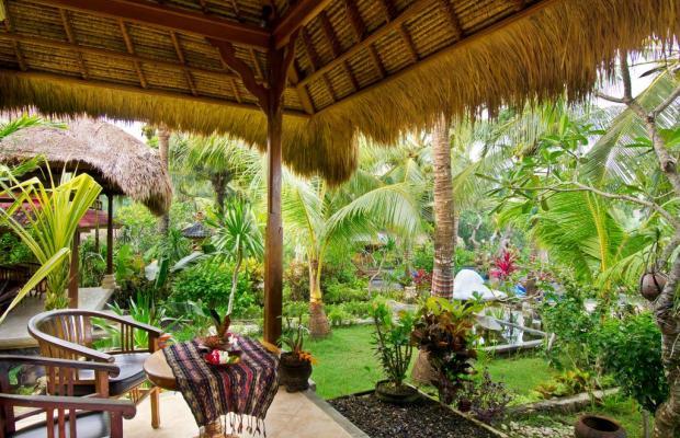 фотографии отеля Mushroom Beach Bungalow изображение №27