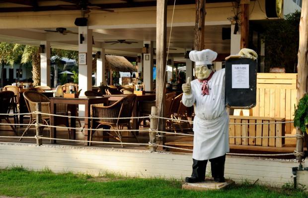 фотографии отеля Dolphin Bay Resort изображение №23