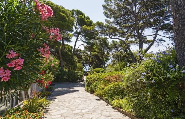 фотографии Hotel Provençal изображение №8