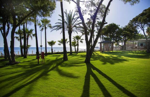 фотографии отеля Barut Acantus & Cennet изображение №35