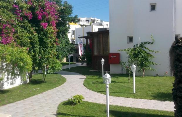 фотографии отеля Palm Garden Gumbet (ex.Grand Iskandil) изображение №15