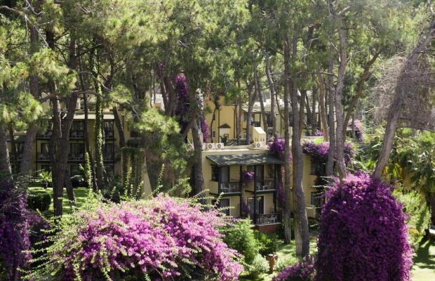фотографии отеля Turquoise Resort Hotel & SPA изображение №23