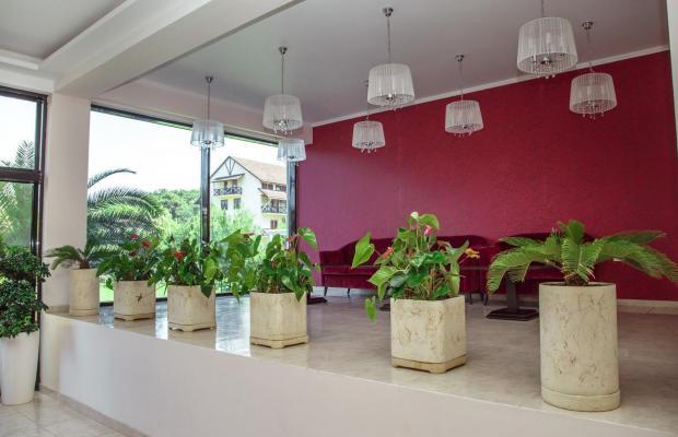 фотографии отеля Апсара (Apsara) изображение №23