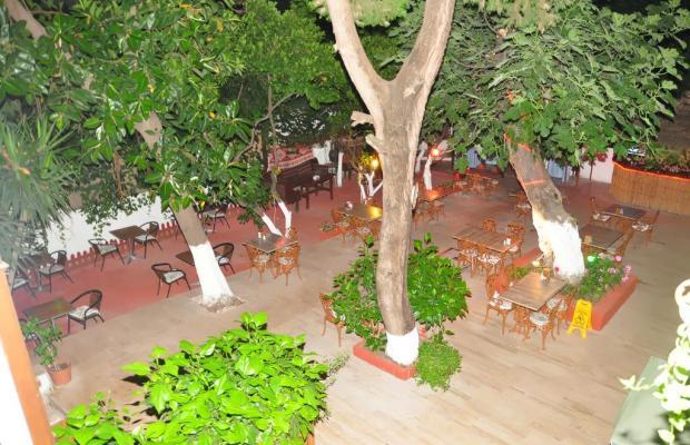 фото отеля Kaliptus Hotel  изображение №25