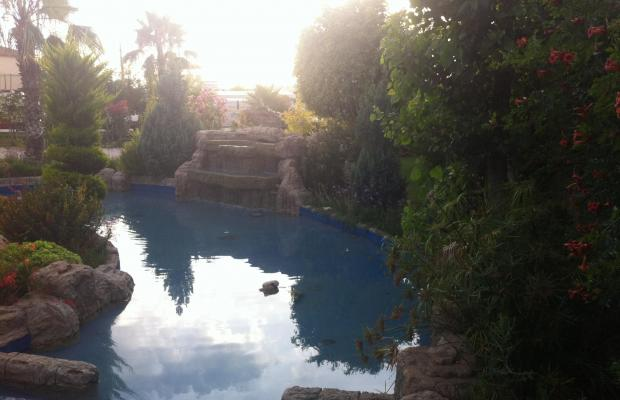 фото отеля Club Mermaid Village изображение №9