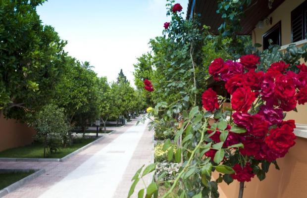 фото Ozlem Garden Hotel изображение №10