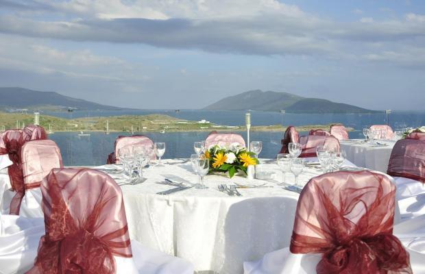 фотографии Royal Arena Resort & Spa (ex. Litera Royal Marin Resort; Medesa) изображение №8